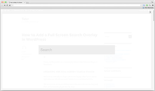 باکس جستجوی تمام صفحه در وردپرس