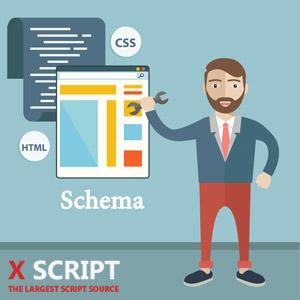 تاثیر Schema بر بهینه سازی وردپرس